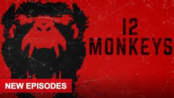 Is 12 Monkeys: Season 3 (2017) on Netflix Hong Kong